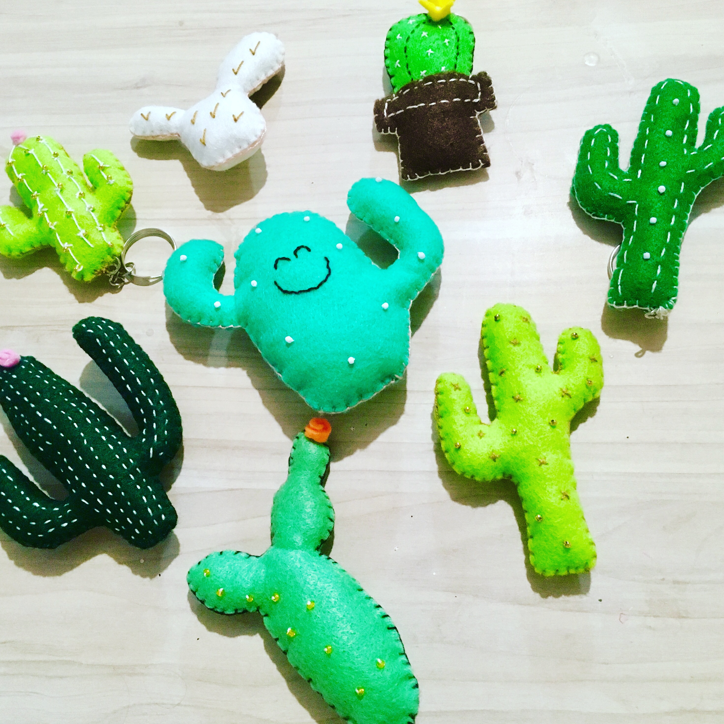 Llaveros o iman Cactus