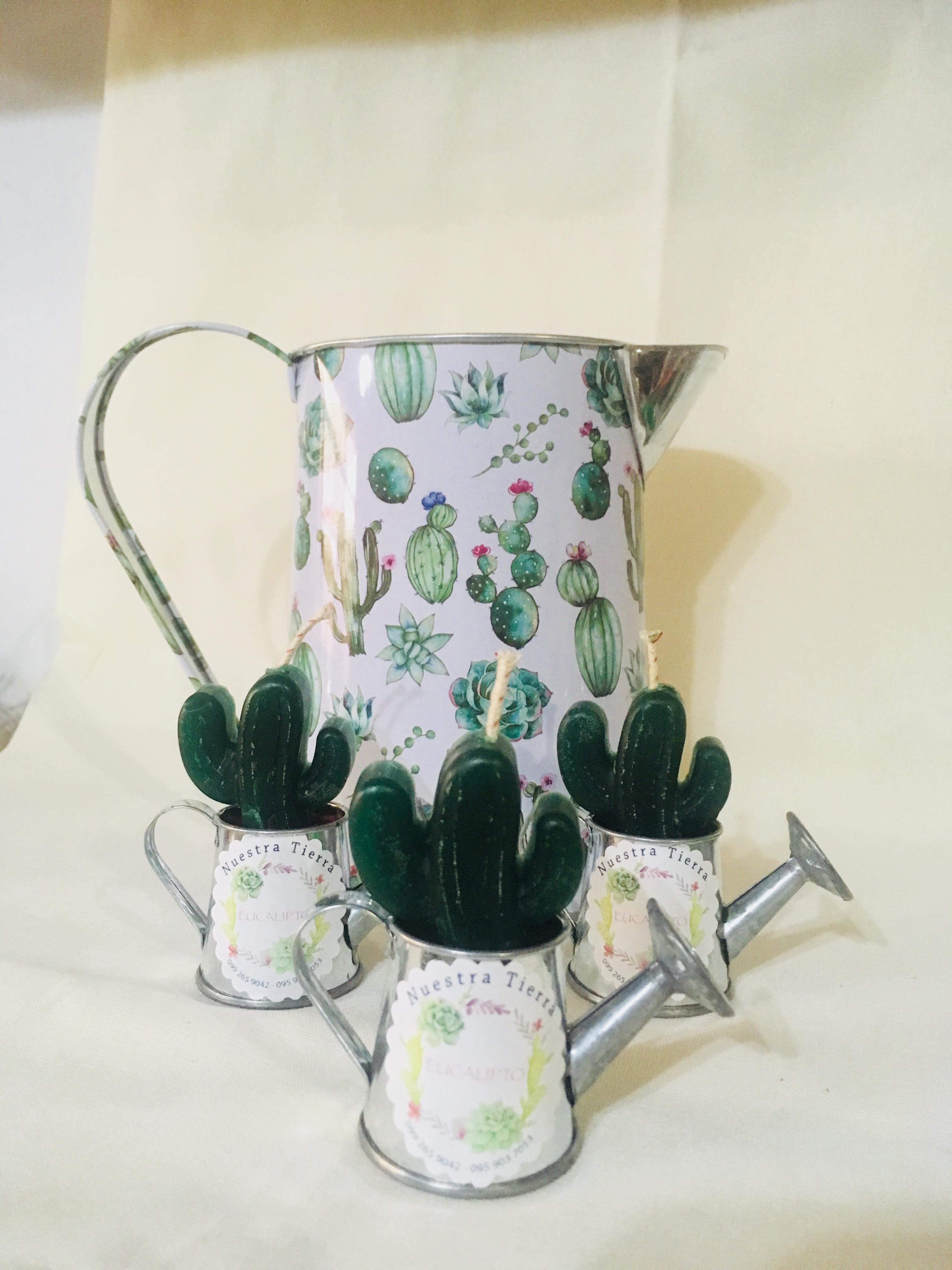 Jarra vela cactus