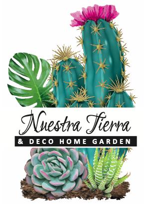 plantas, suculentas cactus quito ecuador